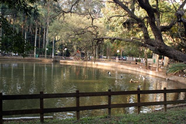 Parque-do-Jaraguá.jpg